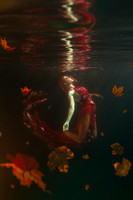 Autumnal Fall (Underwater)